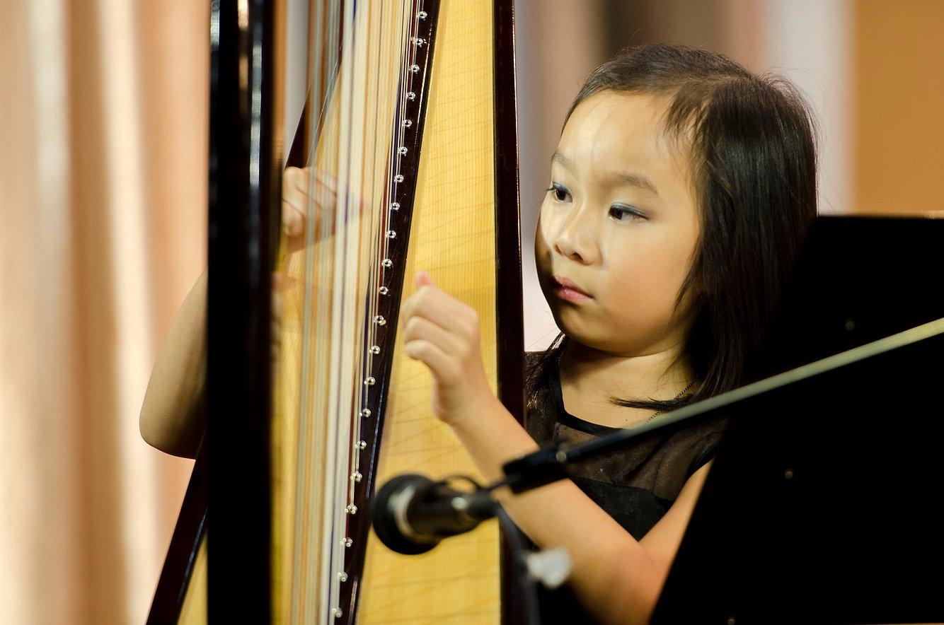 {               en: 'Fine Music (Yuen Long, Shatin, Fanling, Tuen Mun)',               cn: '悅藝音樂教育 (元 朗, 沙田, 粉嶺, 屯門)'             } 6
